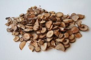 Cinnamon twig